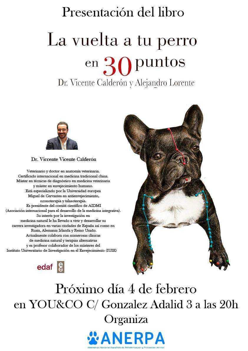 Dorable Cartel De La Anatomía Del Perro Bosquejo - Imágenes de ...
